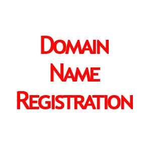 Internet Domain Name Registration